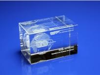 <p><em><strong>Материалы:</strong>оптическое стекло</em></p> <p><em><strong>Технологии:</strong> лазерная гравировка внутри стекла</em></p> <p><strong><em>Размер,мм:</em></strong><em>50х50х80</em></p> <p><strong><em>Примерная стоимость, руб.: </em></strong><em>1 300</em></p> <p><em><em>изделия изготавливаются по Вашим индивидуальным требованиям,</em><em>стоимость зависит от сложности изготовления, материалов и тиража</em></em></p>